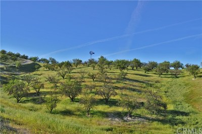 Paso Robles CA Residential Lots & Land For Sale: $385,000