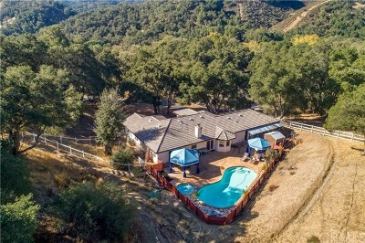 Atascadero Single Family Home For Sale: 6905 Lomitas Road