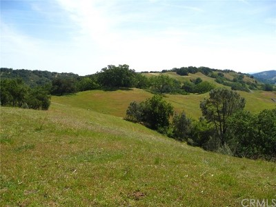 San Luis Obispo County Residential Lots & Land For Sale: 11880 Santa Rosa Creek Road