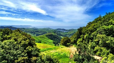 Cayucos Residential Lots & Land For Sale: Old Creek Road