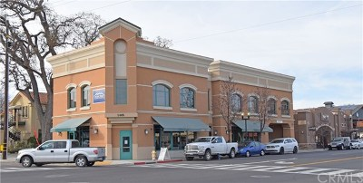 San Luis Obispo County Commercial Lease For Lease: 1405 Spring Street #103