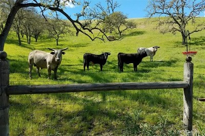 Santa Margarita, Templeton, Atascadero, Paso Robles Residential Lots & Land For Sale: 2750 Raptor Ridge Trail