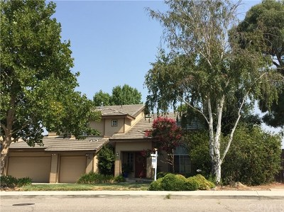 Paso Robles Single Family Home For Sale: 217 Meadowlark Road