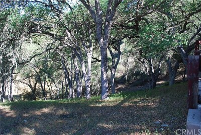 San Luis Obispo County Residential Lots & Land For Sale: 2263 Lariat Loop