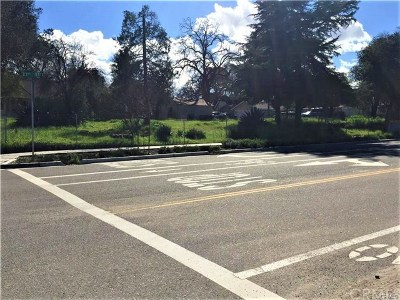 San Luis Obispo County Commercial For Sale: 2045 Spring Street