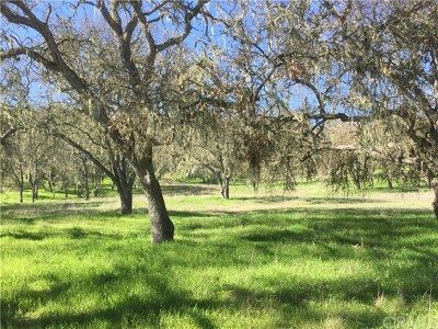 San Luis Obispo County Residential Lots & Land For Sale: Spring Creek Way