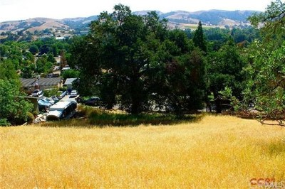 Atascadero Residential Lots & Land For Sale: 7470 Castano Avenue
