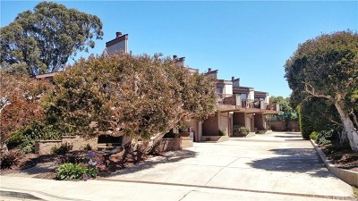 San Luis Obispo County Condo/Townhouse For Sale: 520 Morro Avenue #B