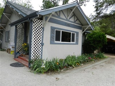 Atascadero Single Family Home For Sale: 17480 Pine Street