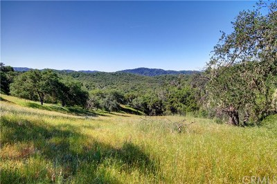 San Luis Obispo County Residential Lots & Land For Sale: 3655 Delaney Place
