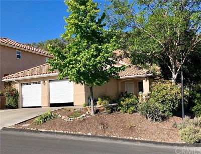 Atascadero Single Family Home For Sale: 8435 Paseo De Caballo