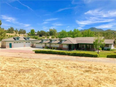 Paso Robles Single Family Home For Sale: 9420 Windmill Road