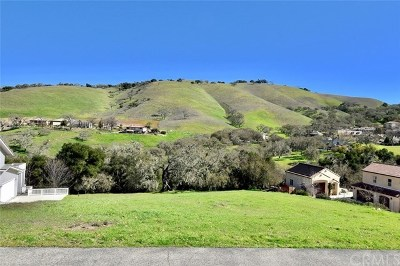 San Luis Obispo County Residential Lots & Land For Sale: 9928 Flyrod Drive