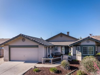 Paso Robles Single Family Home For Sale: 193 Bridgegate Lane