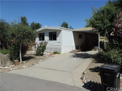 Paso Robles Manufactured Home For Sale: 3049 Cruise Circle
