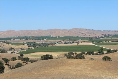 San Luis Obispo County Residential Lots & Land For Sale: Wellsona Road