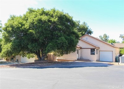 Paso Robles Single Family Home For Sale: 4962 Buck Tail Lane