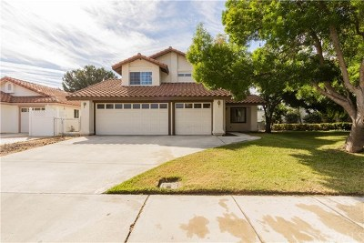 Paso Robles Single Family Home For Sale: 928 Torrey Pines Drive