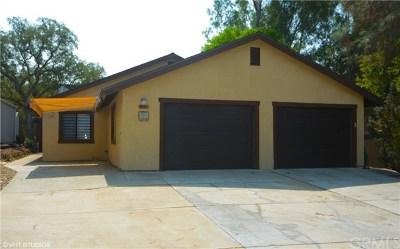Paso Robles Single Family Home For Sale: 2598 Pinto Lane