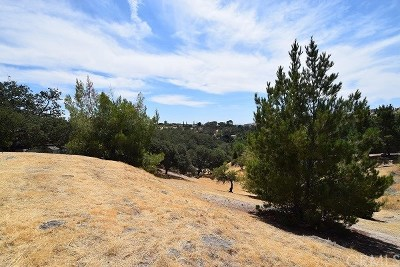 Paso Robles Residential Lots & Land For Sale: 15th Street