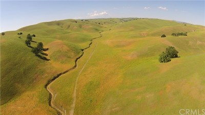San Luis Obispo County Residential Lots & Land For Sale: 2150 Pine Canyon Road