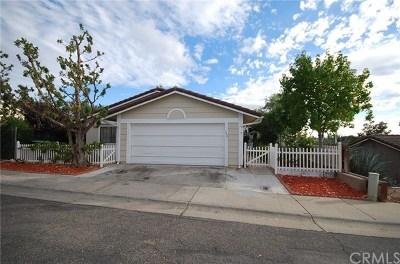 Paso Robles Single Family Home For Sale: 330 Primrose Lane