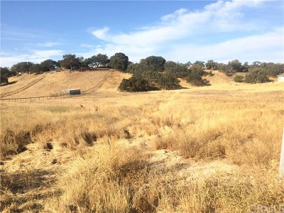 Paso Robles Residential Lots & Land For Sale: Loma Real