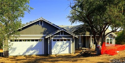 Paso Robles CA Single Family Home For Sale: $899,000