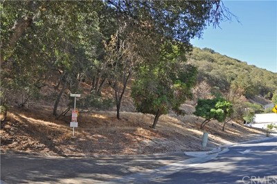 Paso Robles Residential Lots & Land For Sale: 1001 Fern Canyon Road