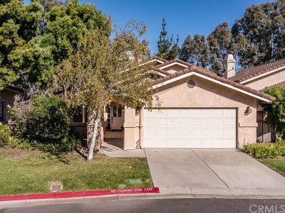 San Luis Obispo Single Family Home For Sale: 744 Clearview Lane