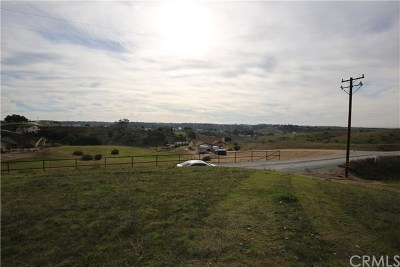 Paso Robles Residential Lots & Land For Sale: Black Tail Place