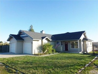 Paso Robles Single Family Home For Sale: 5160 White Tail Place