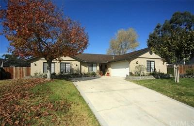 Santa Barbara County Single Family Home For Sale: 5293 Arroyo Court
