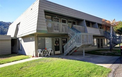 Santa Margarita, Templeton, Atascadero, Paso Robles Condo/Townhouse For Sale: 3334 Harbor Circle #H