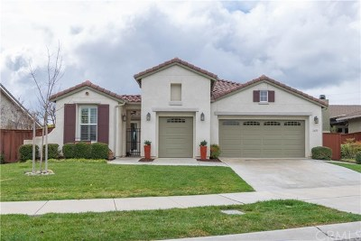 Paso Robles Single Family Home For Sale: 2651 Traditions Loop