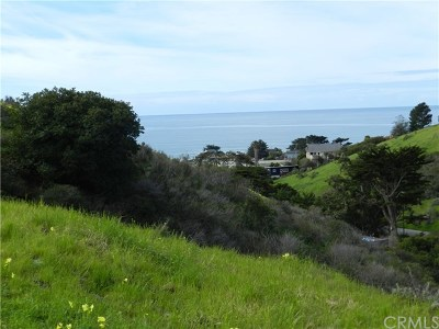 Cayucos Residential Lots & Land For Sale: 3020 Gilbert Avenue