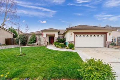 Paso Robles CA Single Family Home For Sale: $539,000