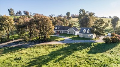Paso Robles Single Family Home For Sale: 1360 Spanish Camp Road