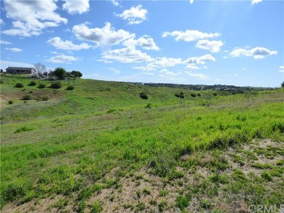 San Luis Obispo County Residential Lots & Land For Sale: 5930 Forked Horn Place