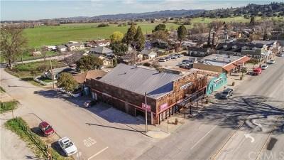 San Luis Obispo County Commercial For Sale: 22390 El Camino Real