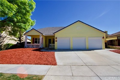 Paso Robles Single Family Home For Sale: 248 Silver Oak Drive
