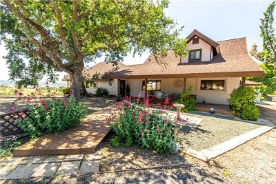 Paso Robles Single Family Home For Sale: 5455 High Ridge Road