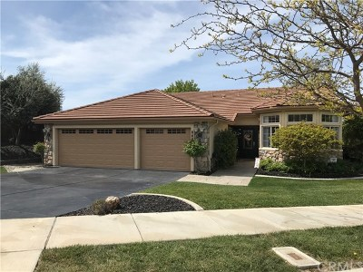 Paso Robles Single Family Home For Sale: 1687 Kleck Road
