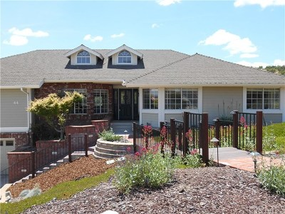 Paso Robles Single Family Home For Sale: 44 Almond Crest Court