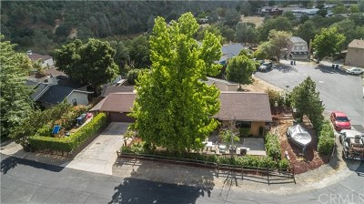 Paso Robles Single Family Home For Sale: 4655 Silver Saddle Lane