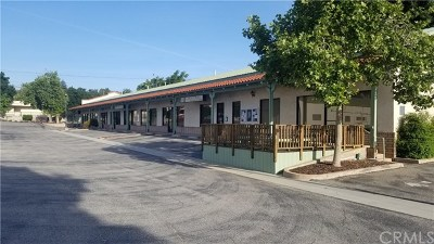 San Luis Obispo County Commercial For Sale: 2508 Spring Street