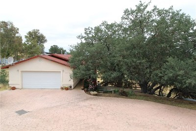 Paso Robles Single Family Home For Sale: 5175 Stagg Hill Place
