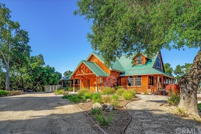 Paso Robles Single Family Home For Sale: 950 Jensen Road