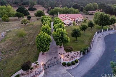 Atascadero Single Family Home For Sale: 9545 Gallina Court