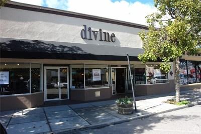 San Luis Obispo County Commercial Lease For Lease: 1325 Park Street